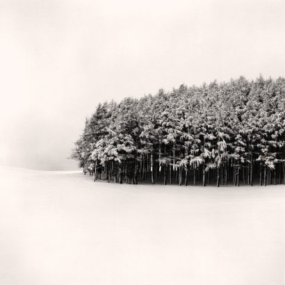 مایکل کنا بیشهزار سفید، هوکاییدو، ژاپن ۲۰۰۴ michael kenna