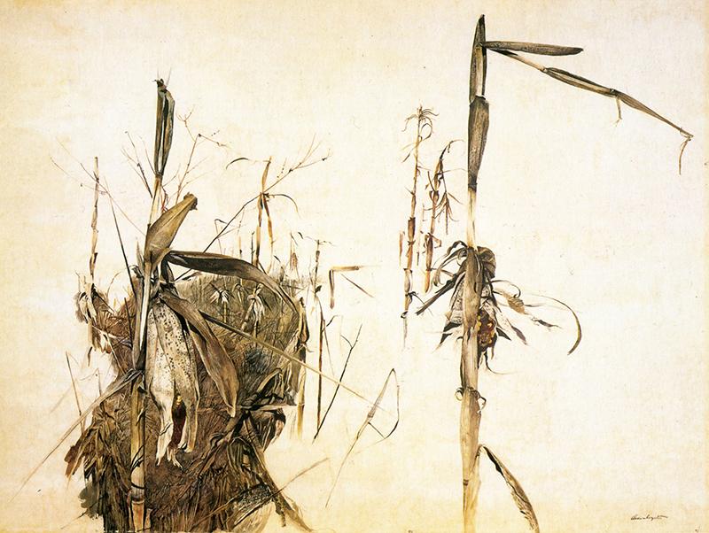 نقاشی از یک ساقهی ذرت در زمستان اثر اندرو وایت